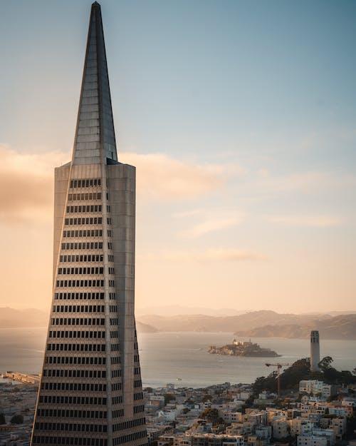 건축, 고층, 도시, 도심의 무료 스톡 사진