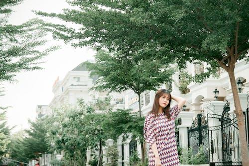 Ảnh lưu trữ miễn phí về giản dị, mặc, Người phụ nữ châu Á, sắc đẹp