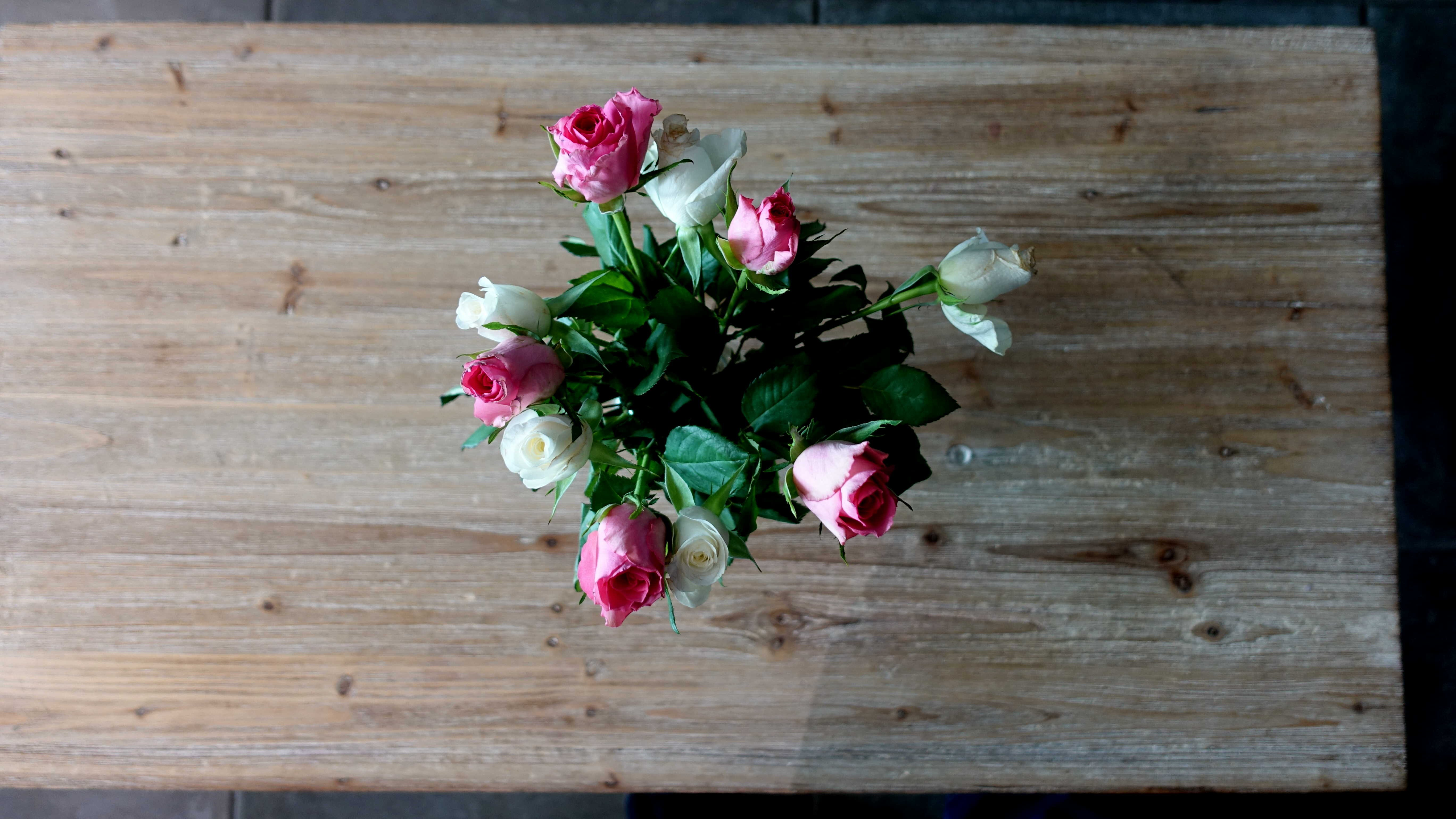 Free stock photo of bouquet, center piece, pink roses, roses