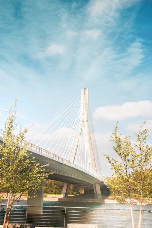 Fotos de stock gratuitas de arquitectura, carretera, infraestructura, puente