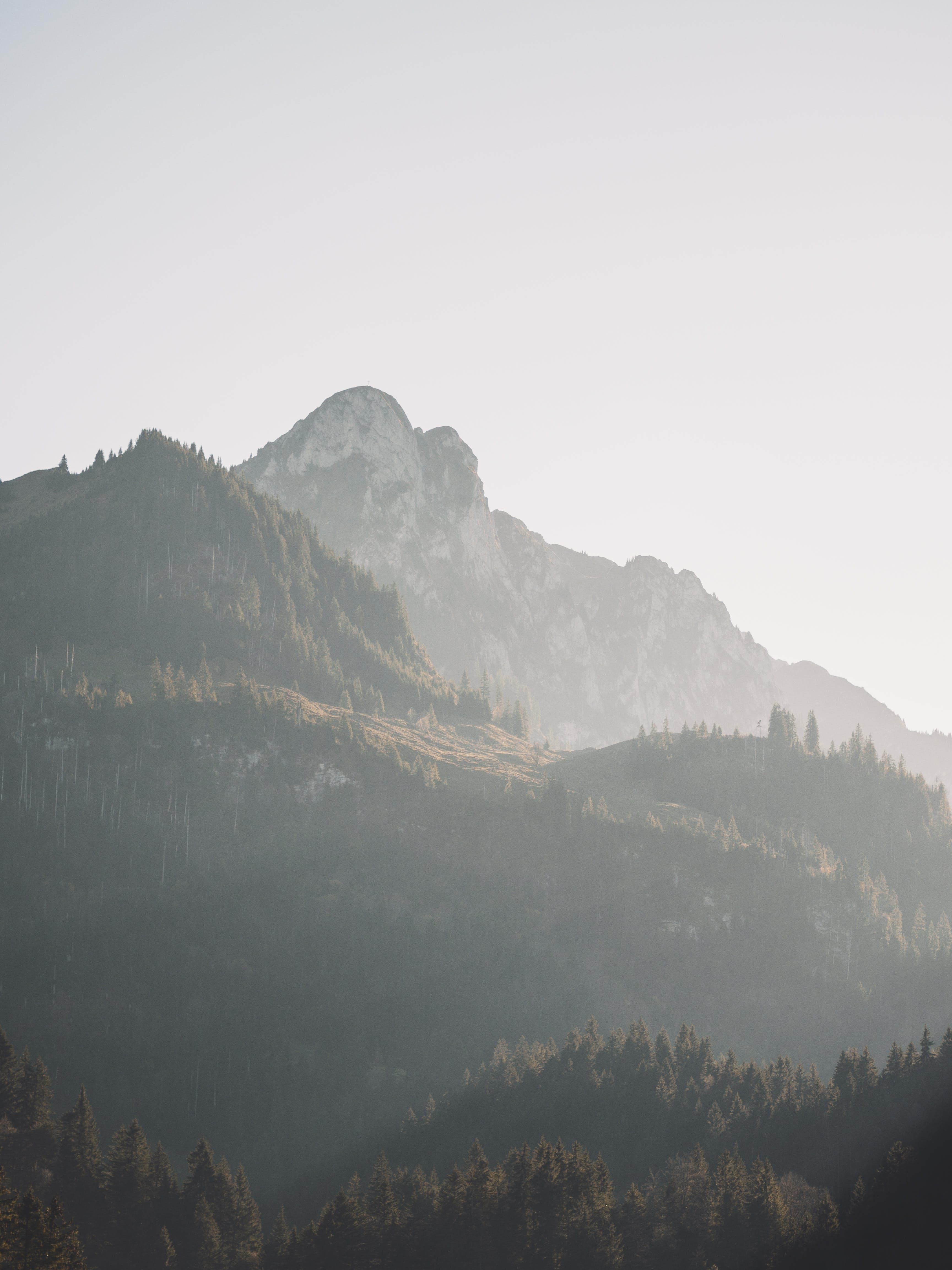 Gratis arkivbilde med fjell, sommer