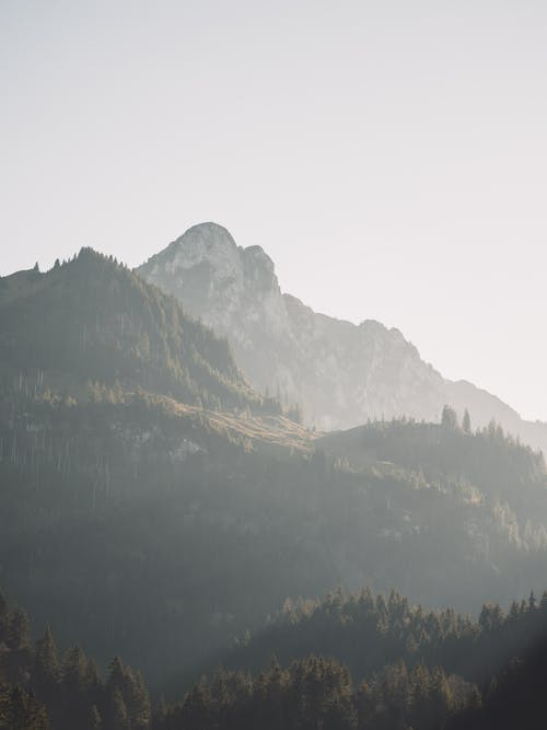 dağlar, yaz içeren Ücretsiz stok fotoğraf