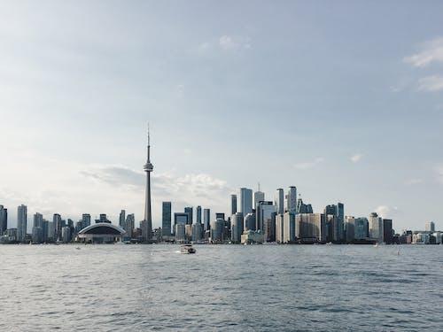 Imagine de stoc gratuită din centrul orașului, iphone, Toronto