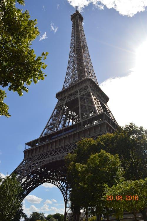 Foto profissional grátis de capital, destino turístico, legume, Paris