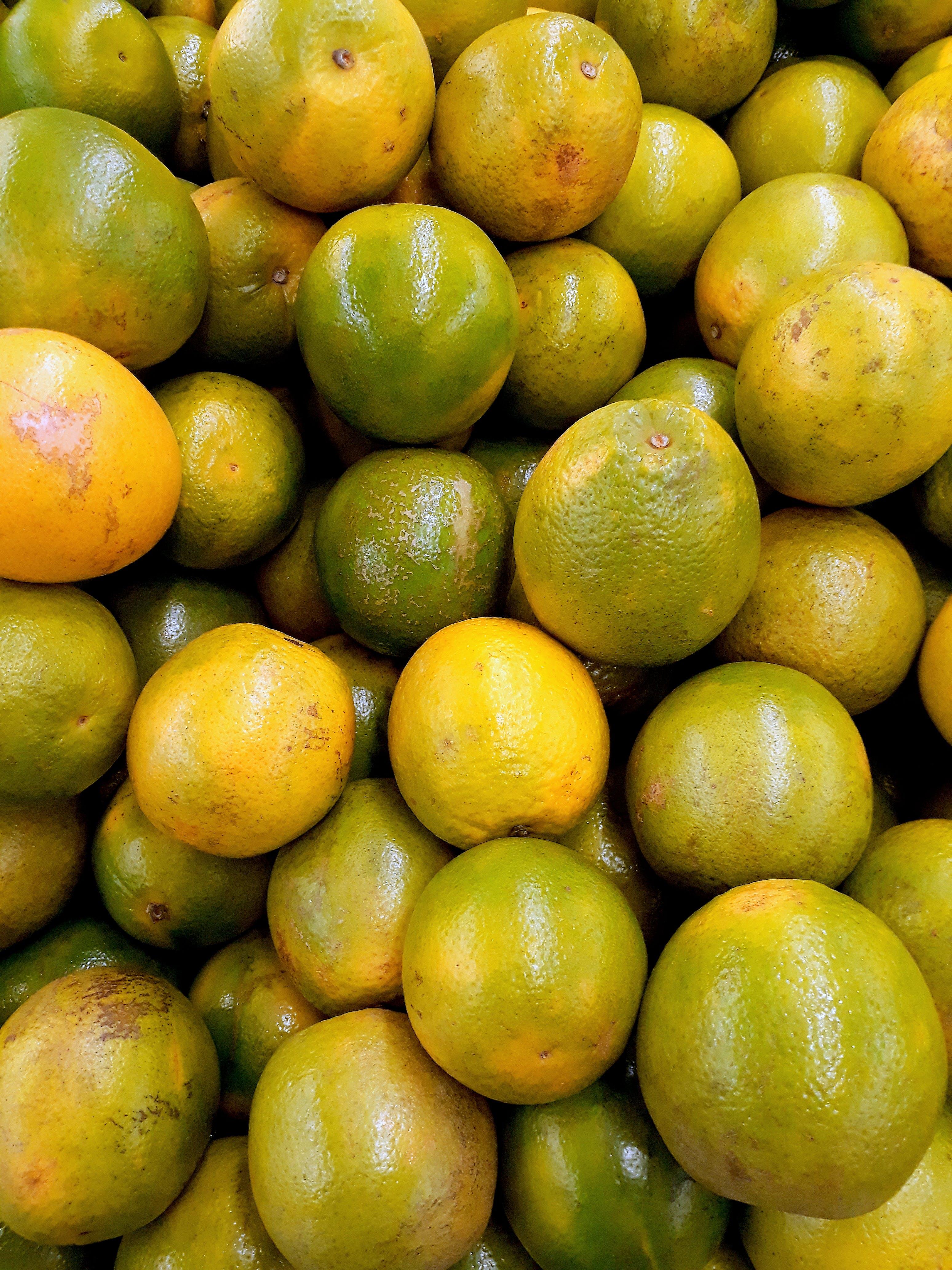 Immagine gratuita di abbondanza, agrumi, arance, freschezza