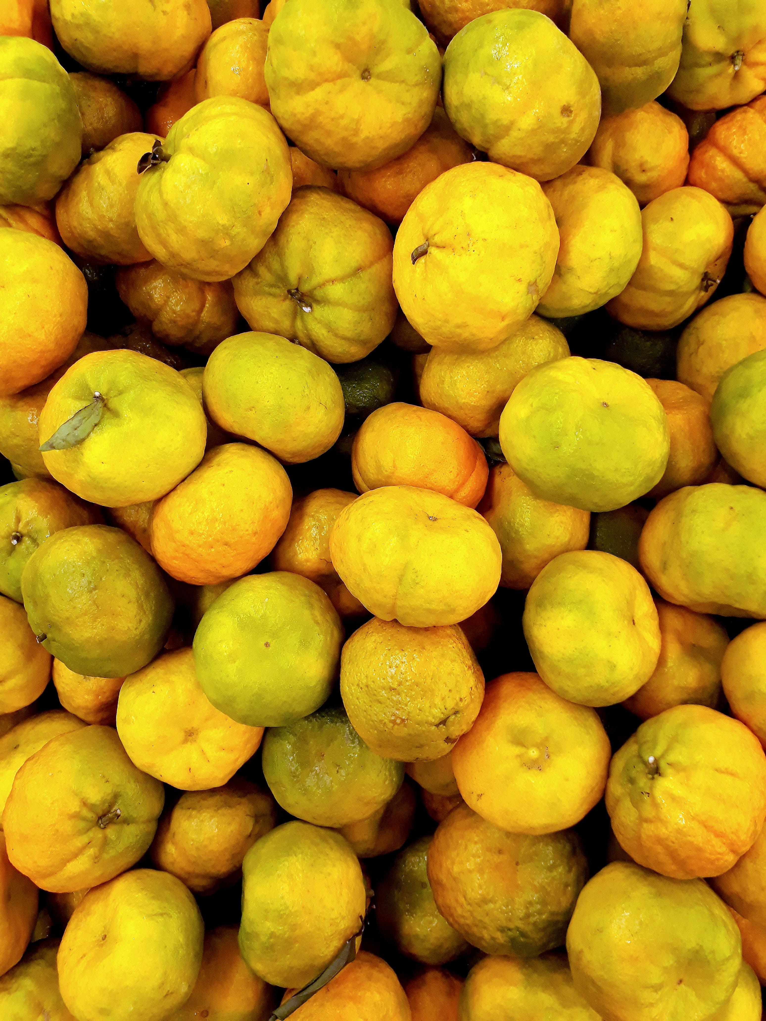 Gratis lagerfoto af appelsiner, Citrus, citrusfrugt, delikat