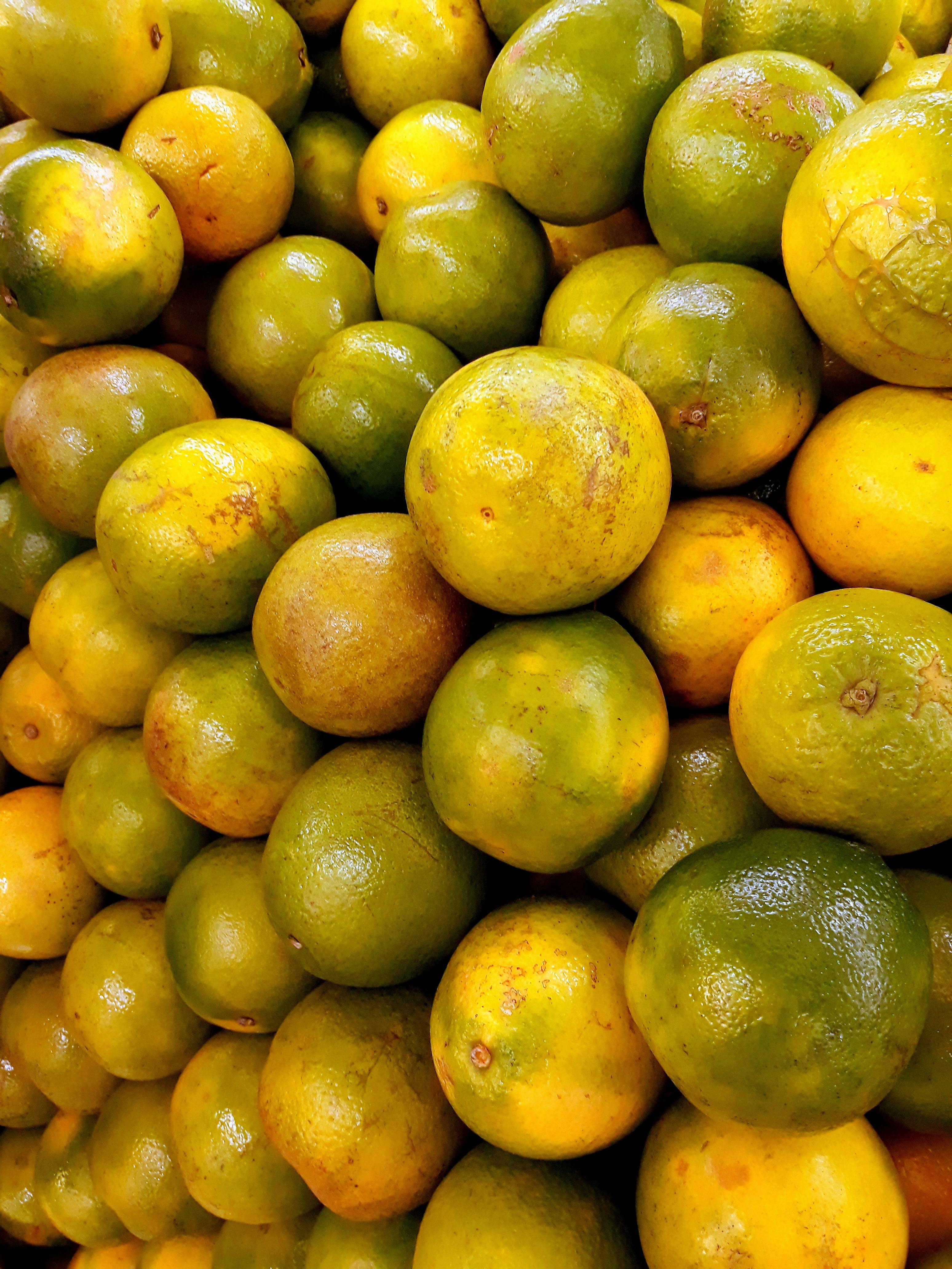 Immagine gratuita di agrume, cibo, lime, salutare