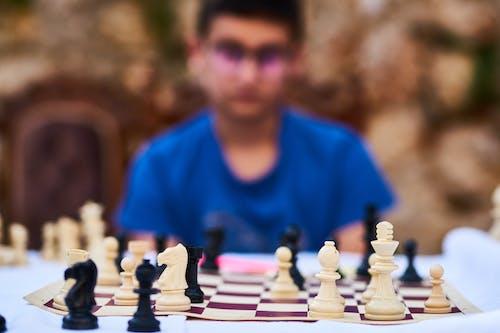 Foto d'estoc gratuïta de casa de préstecs, desafiament, diversió, escac i mat