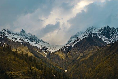 Imagine de stoc gratuită din aventură, frig, în aer liber, munte
