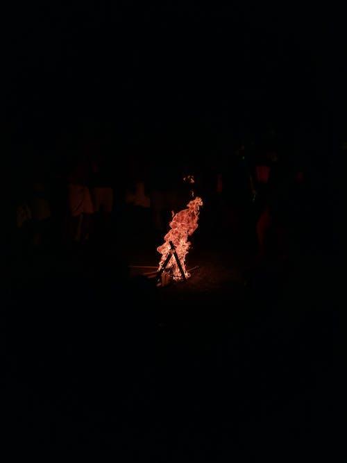 불, 캠프 파이어, 캠핑의 무료 스톡 사진