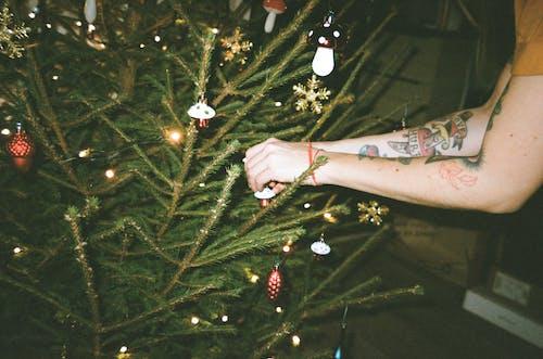 Fotos de stock gratuitas de Adornos de navidad, árbol de Navidad, decoración, decoración navideña