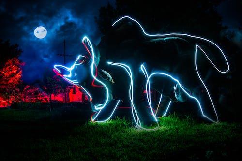Fotobanka sbezplatnými fotkami na tému lightpainting, mesiac, modré čiary, nočná fotografia