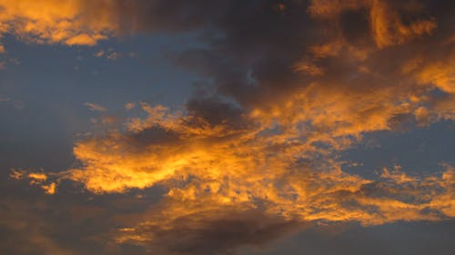 Free stock photo of gold sky
