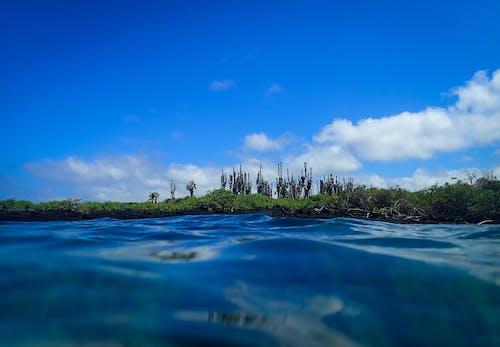 地平線, 天性, 天空, 岸邊 的 免费素材照片