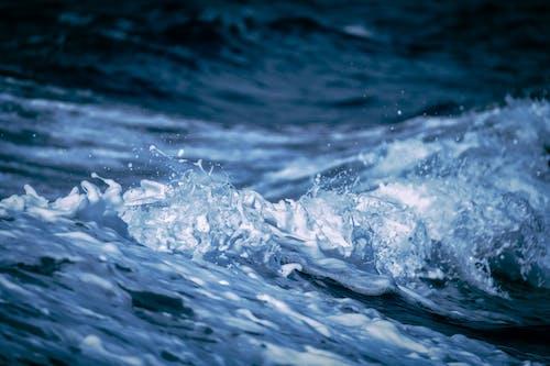 Gratis lagerfoto af bølge, h2o, hav, vand