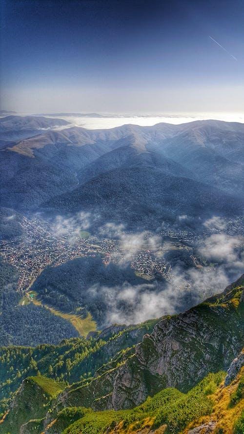 Základová fotografie zdarma na téma hory, jasná obloha, les, letadlo