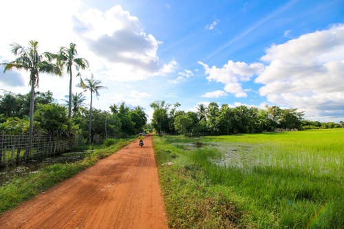 Free stock photo of cambodia, siem reap