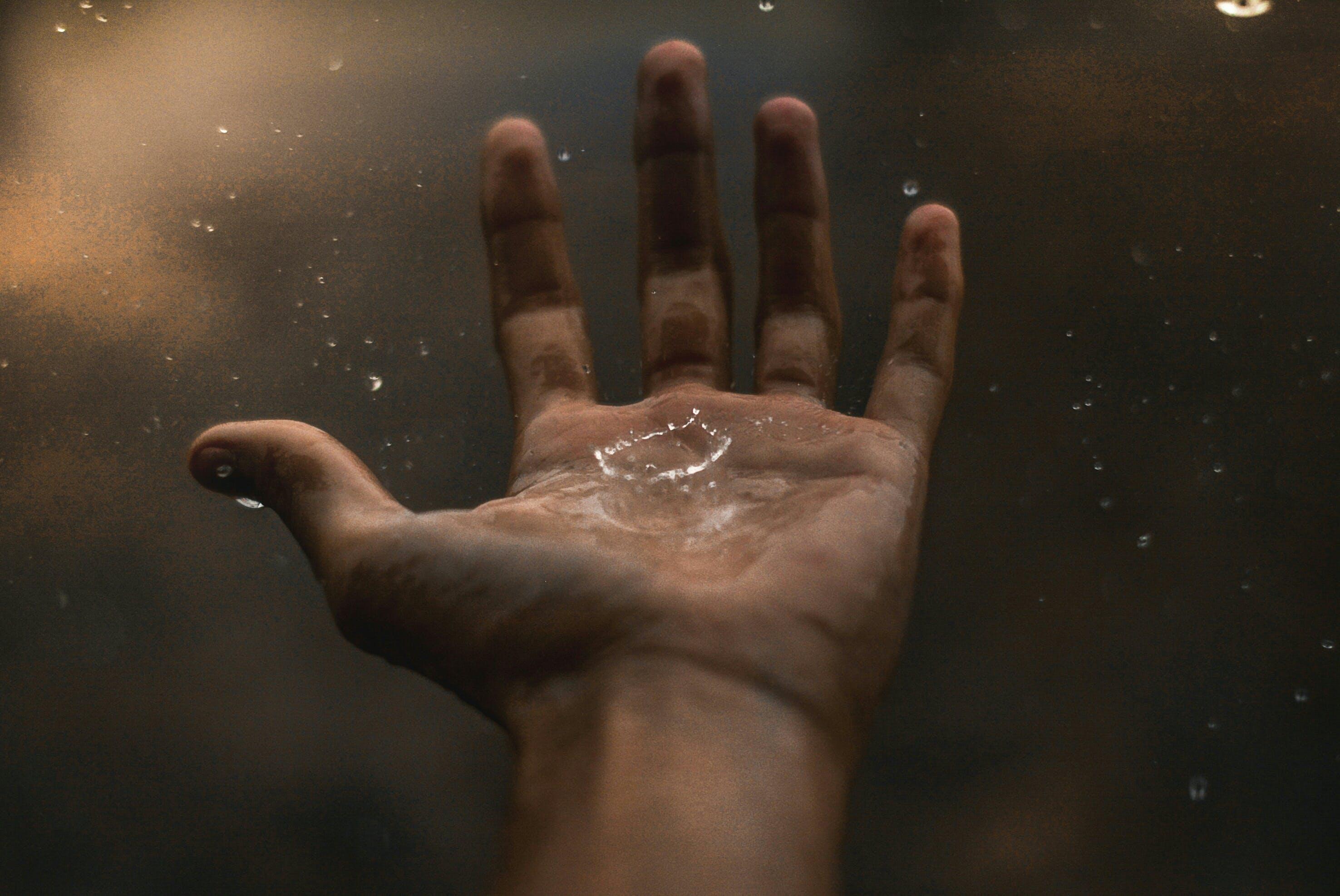 Foto profissional grátis de água, chuva, close, concentração