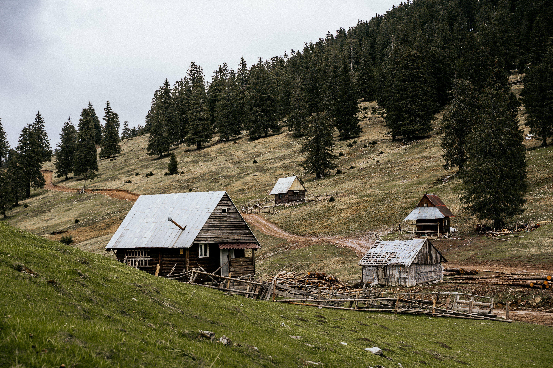 Foto d'estoc gratuïta de bungalou, cabanes, cases, graner