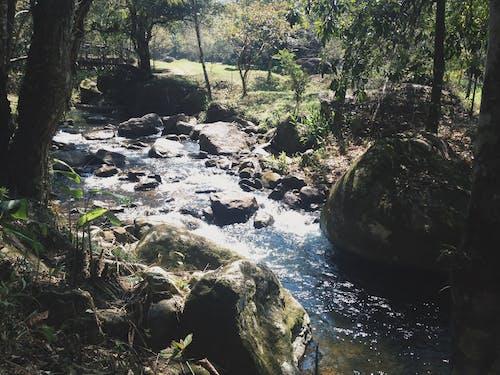 Darmowe zdjęcie z galerii z #mobilechallenge, #natura, #outdoorchallenge, #woda