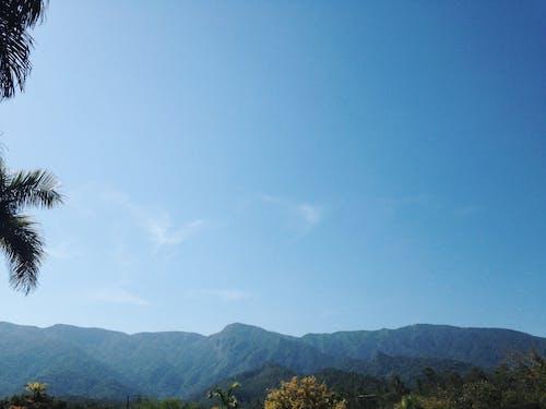 Darmowe zdjęcie z galerii z #mobilechallenge, #natura, #outdoorchallenge