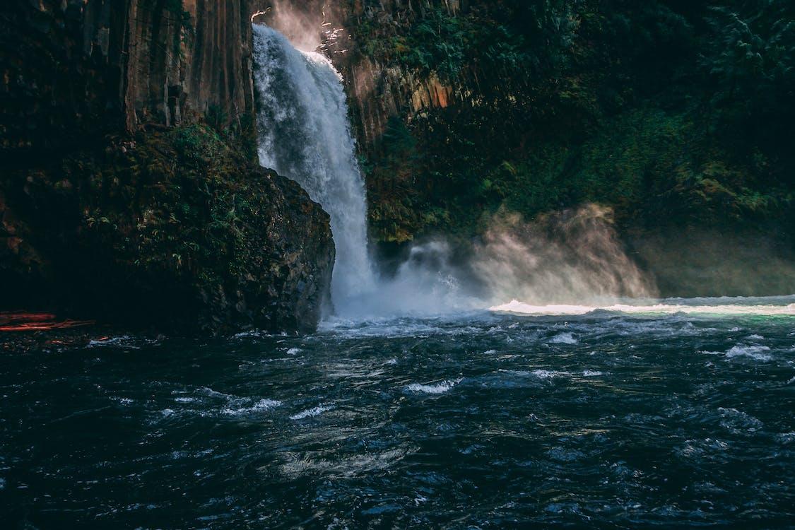 cestovať, cestovný ruch, dažďový prales
