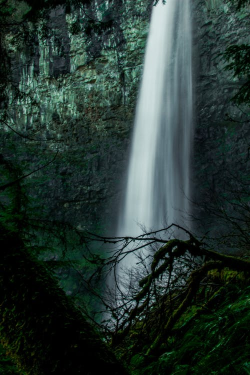 Základová fotografie zdarma na téma cestování, denní světlo, dešťový prales, dlouhá expozice