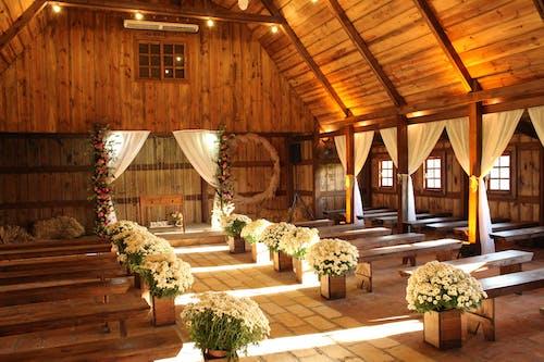 Ảnh lưu trữ miễn phí về ánh sáng ban ngày, cắm hoa, ghế băng gỗ, gỗ