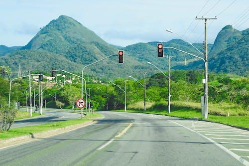 Foto d'estoc gratuïta de a l'aire lliure, arbres, asfalt, autopista