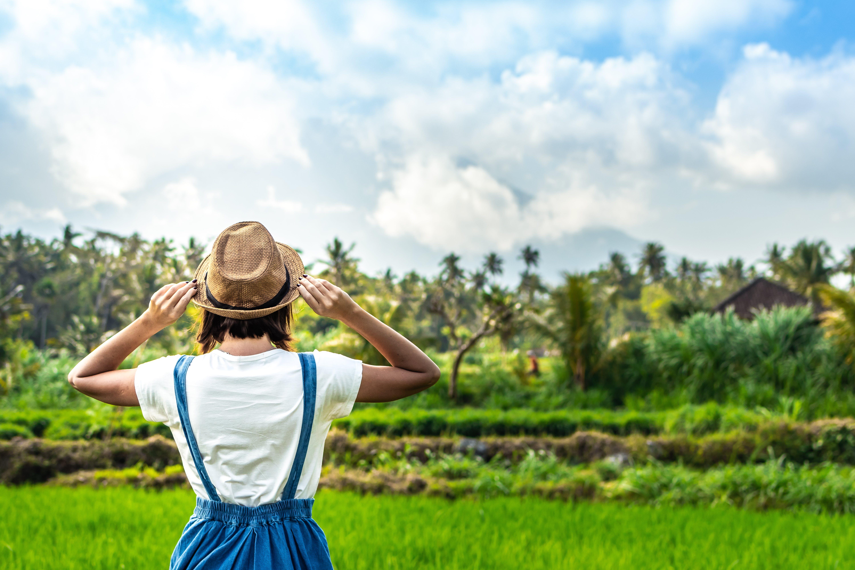 Foto d'estoc gratuïta de a l'aire lliure, arbres, aventura, Bali
