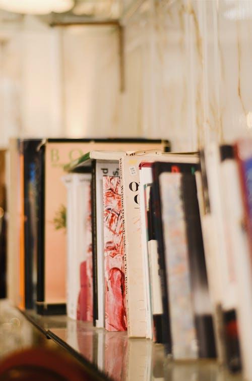Imagine de stoc gratuită din adâncime de câmp, bibliotecă, cărți, poliță