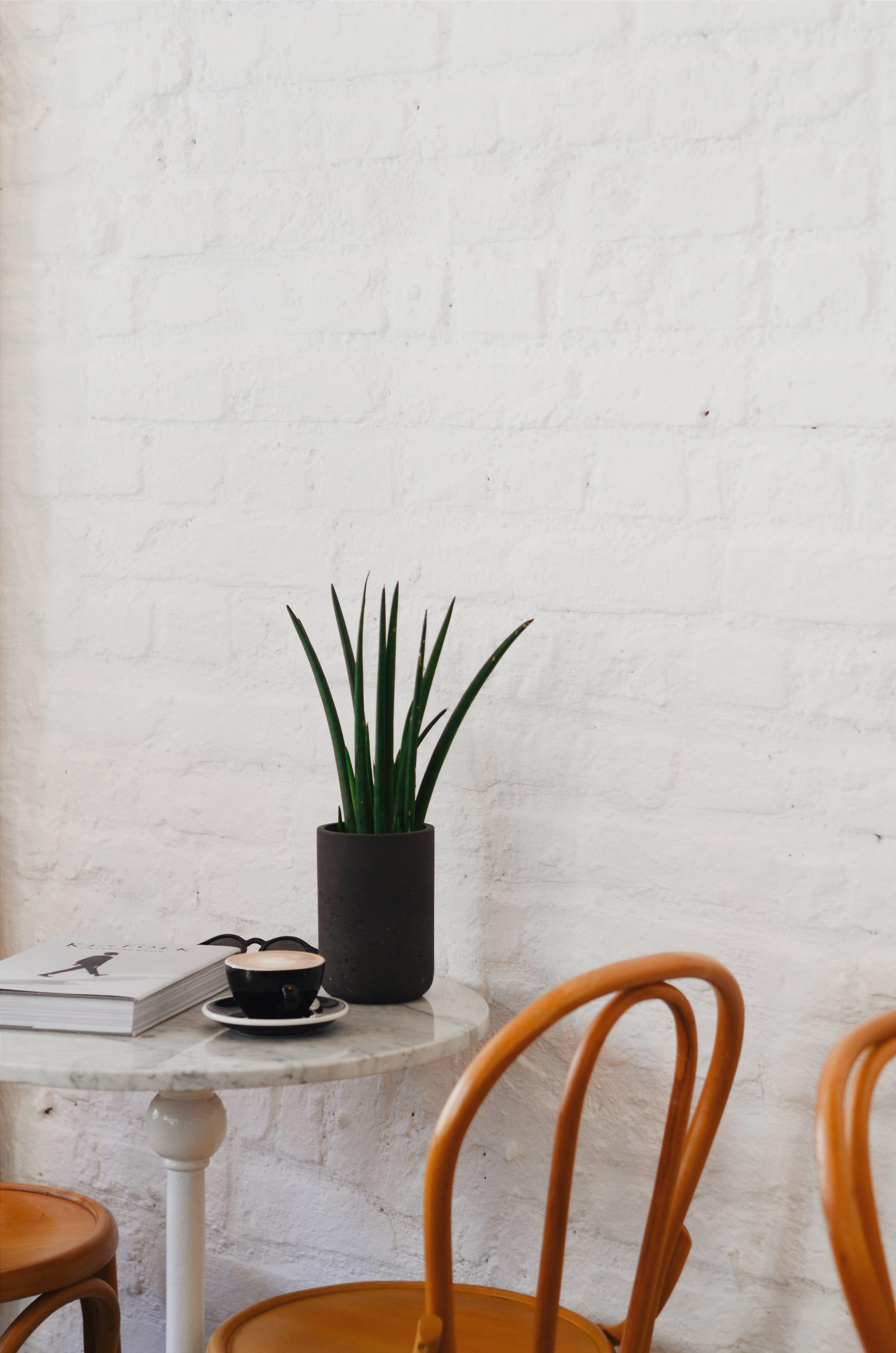 咖啡店, 室內, 牆壁, 表格 的 免费素材照片