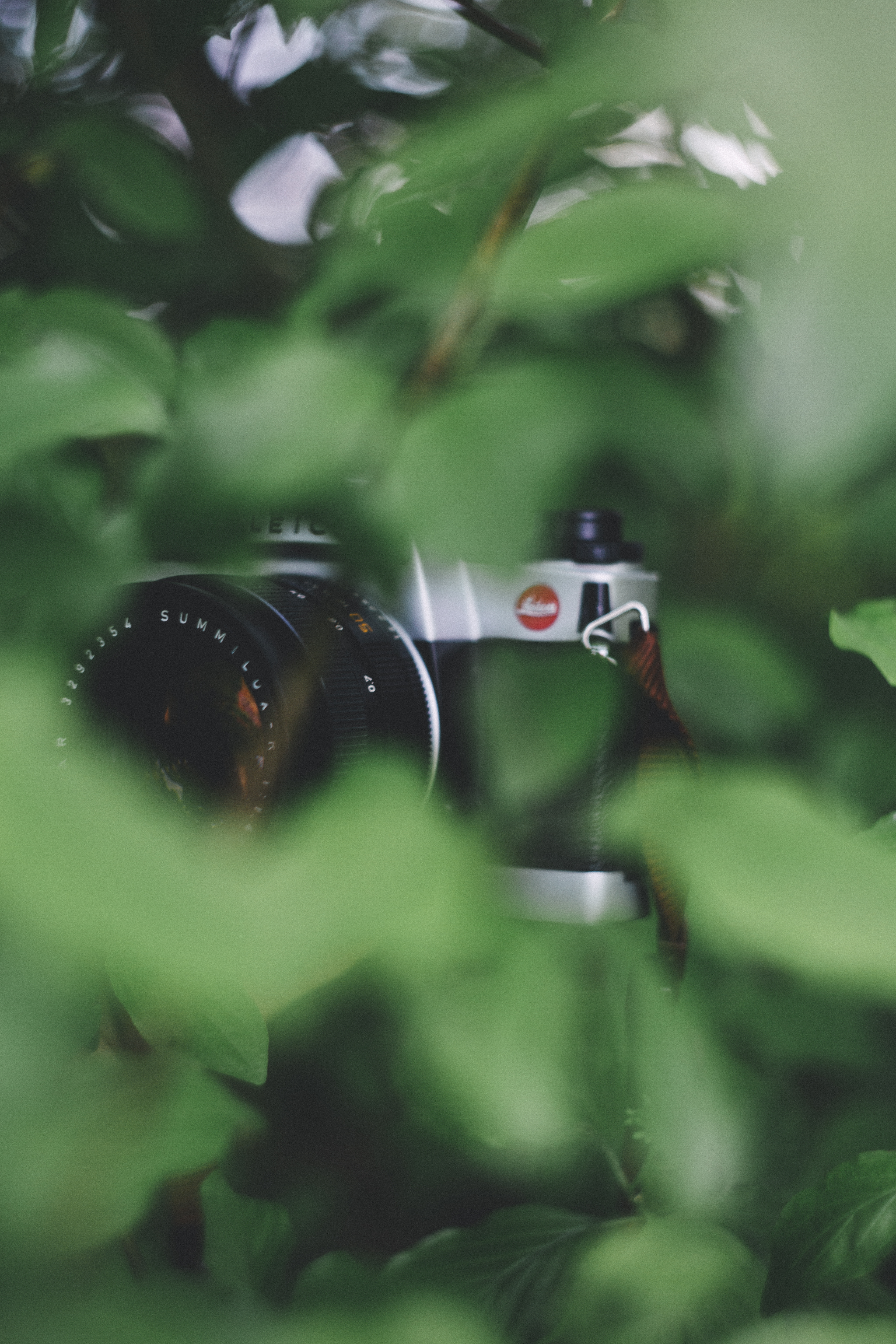 Selective Focus Photography of Camera