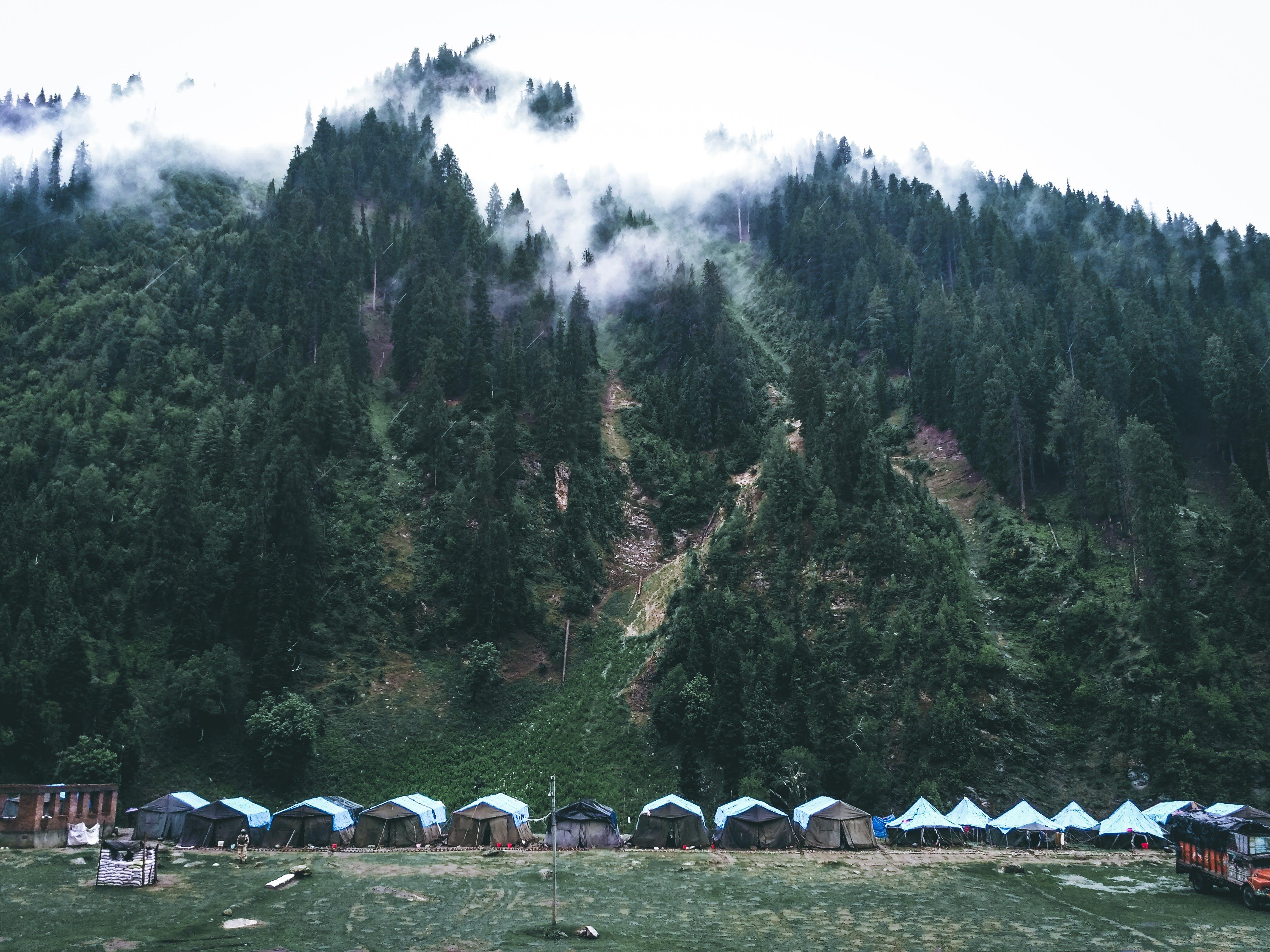 Ingyenes stockfotó fák, hegy, kemping, környezet témában