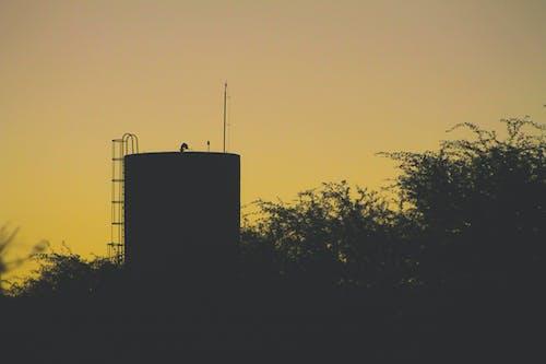 Ilmainen kuvapankkikuva tunnisteilla auringonlasku, keltainen, maisma, siluetti