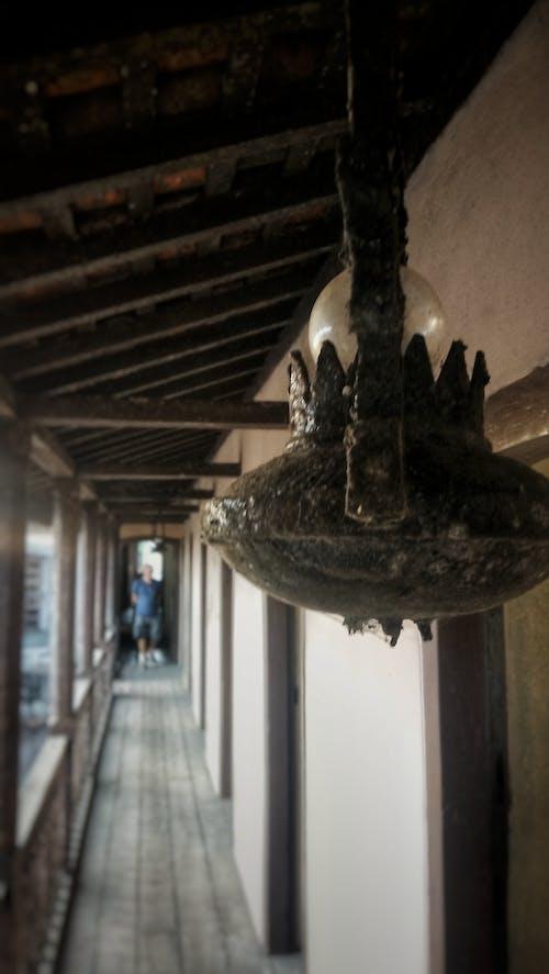 Free stock photo of 4k wallpaper, architectural design, areia, bones