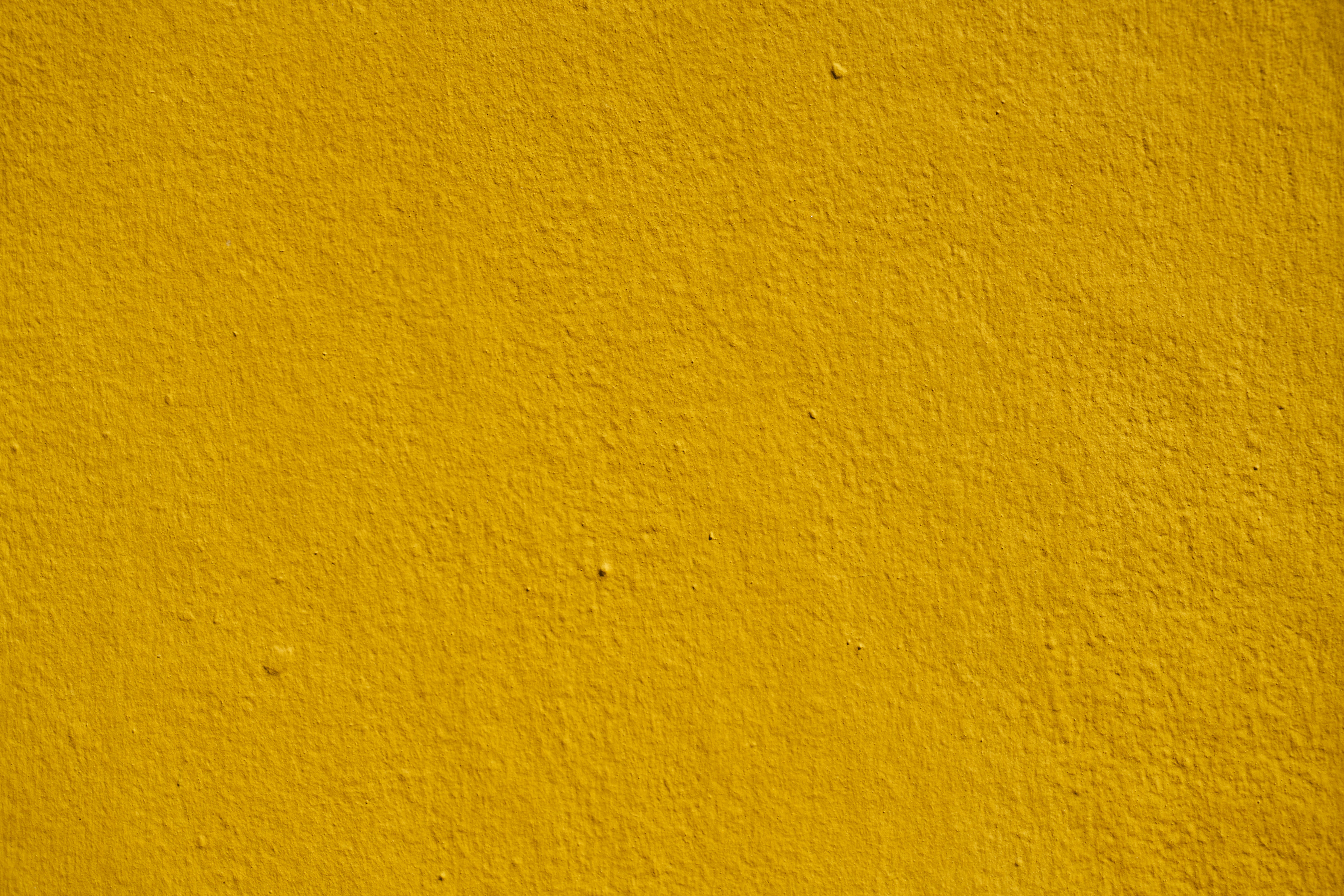 Free stock photo of backdrop, background, close up, detail