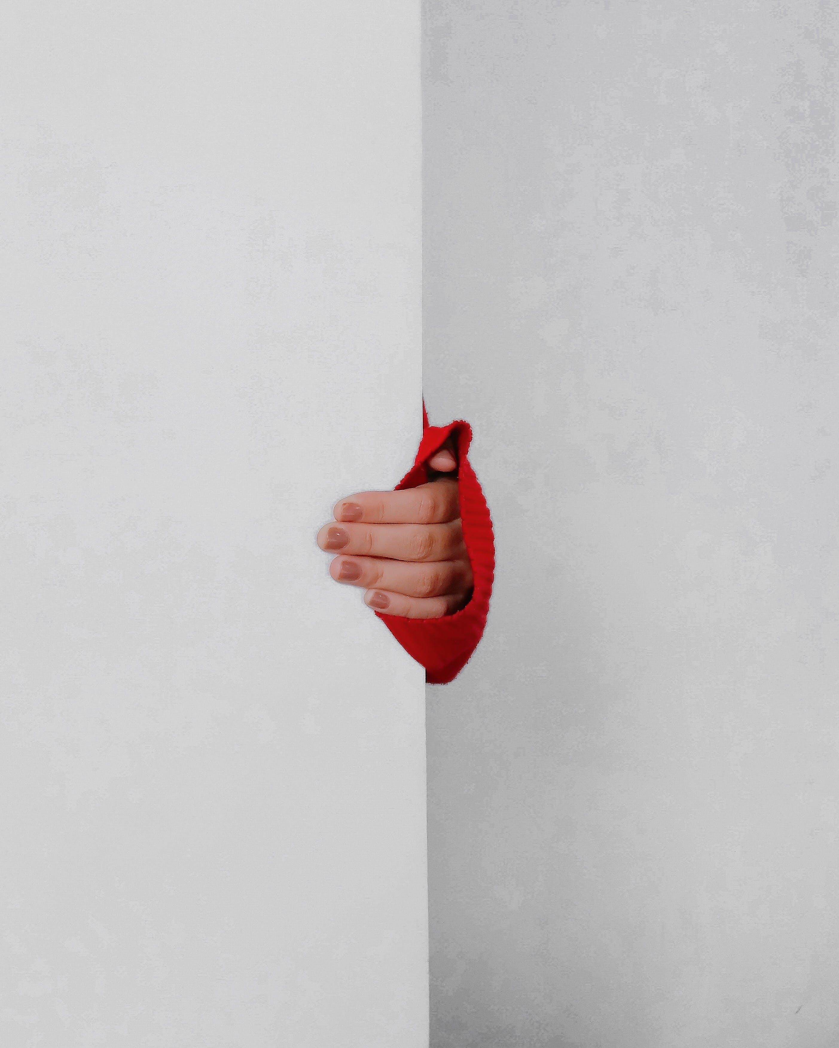 Gratis lagerfoto af fingre, hånd, holde, indendørs