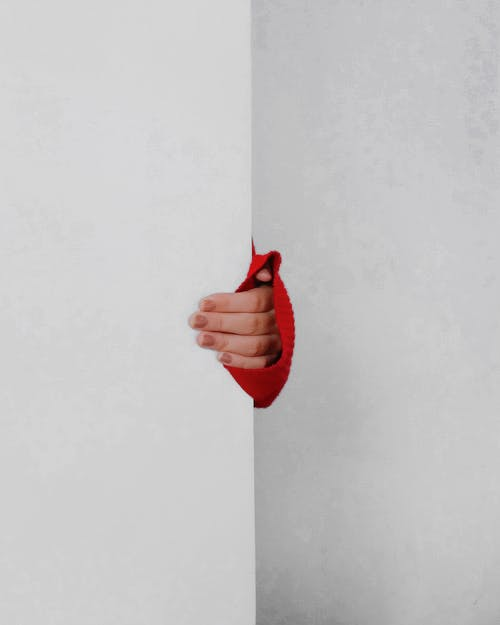 Foto profissional grátis de dedos, dentro de casa, holding, mão