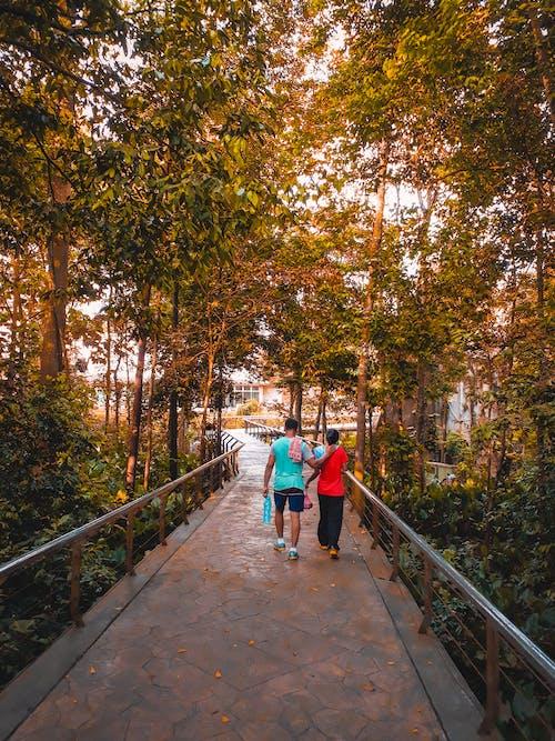 Free stock photo of couple, couple goal, couple walking, couples