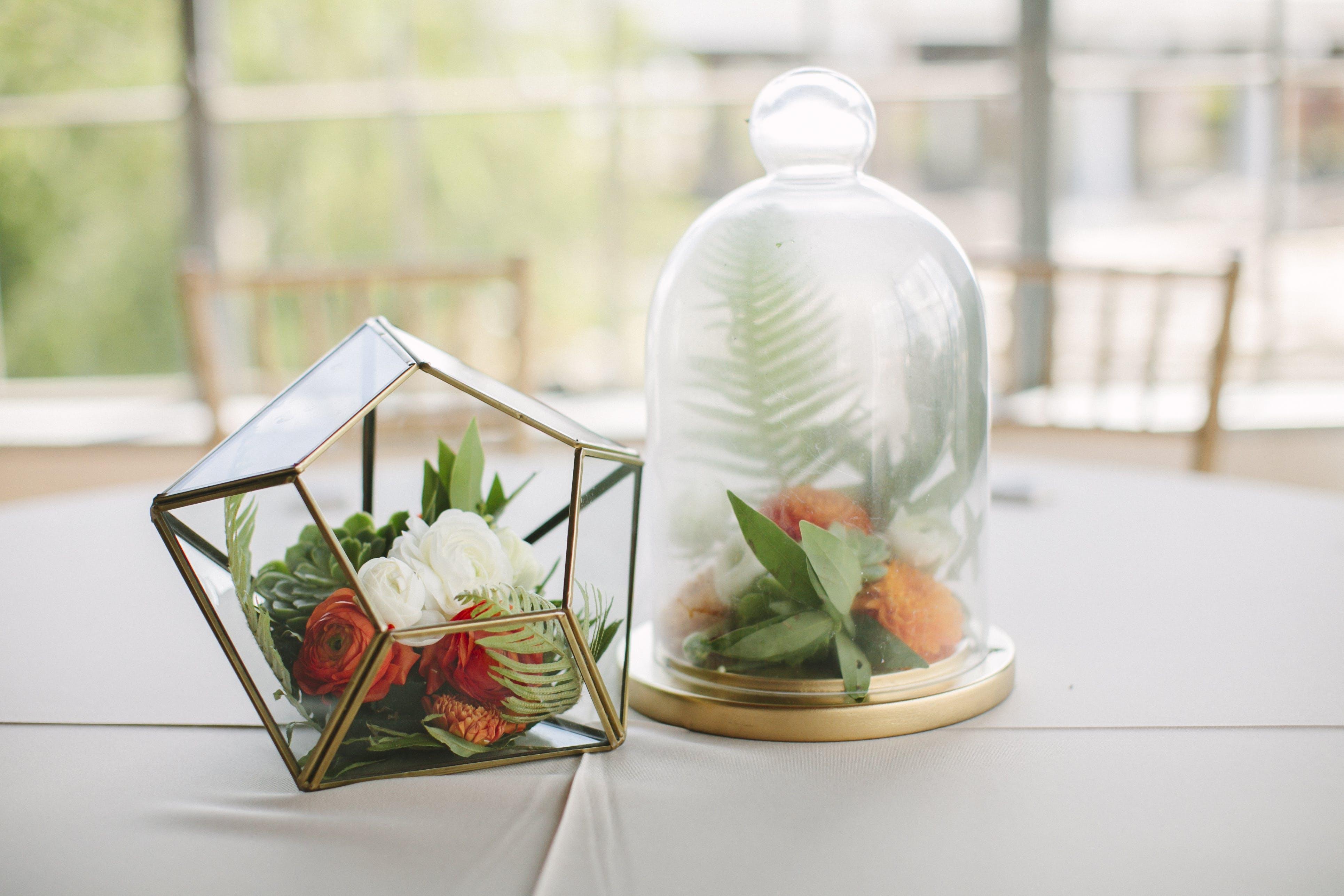 Základová fotografie zdarma na téma aranžování květin, dekor, dekorace, kapradina