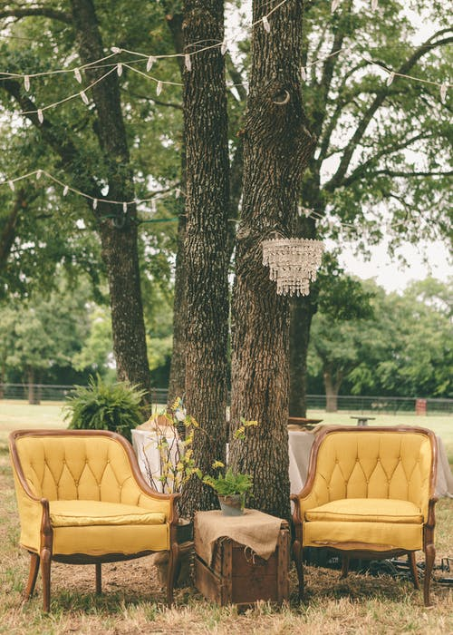 Photo Of Chairs Under The Tree