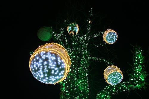 Free stock photo of advent, christmas, croatia, tree