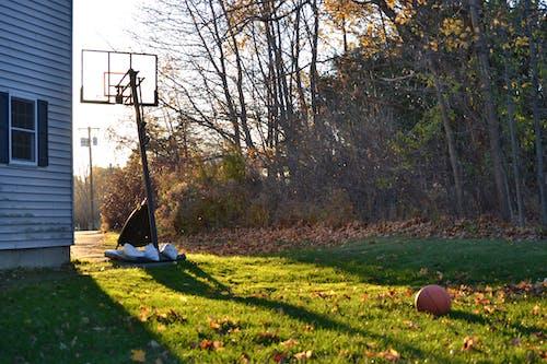 Free stock photo of basketball, sunset
