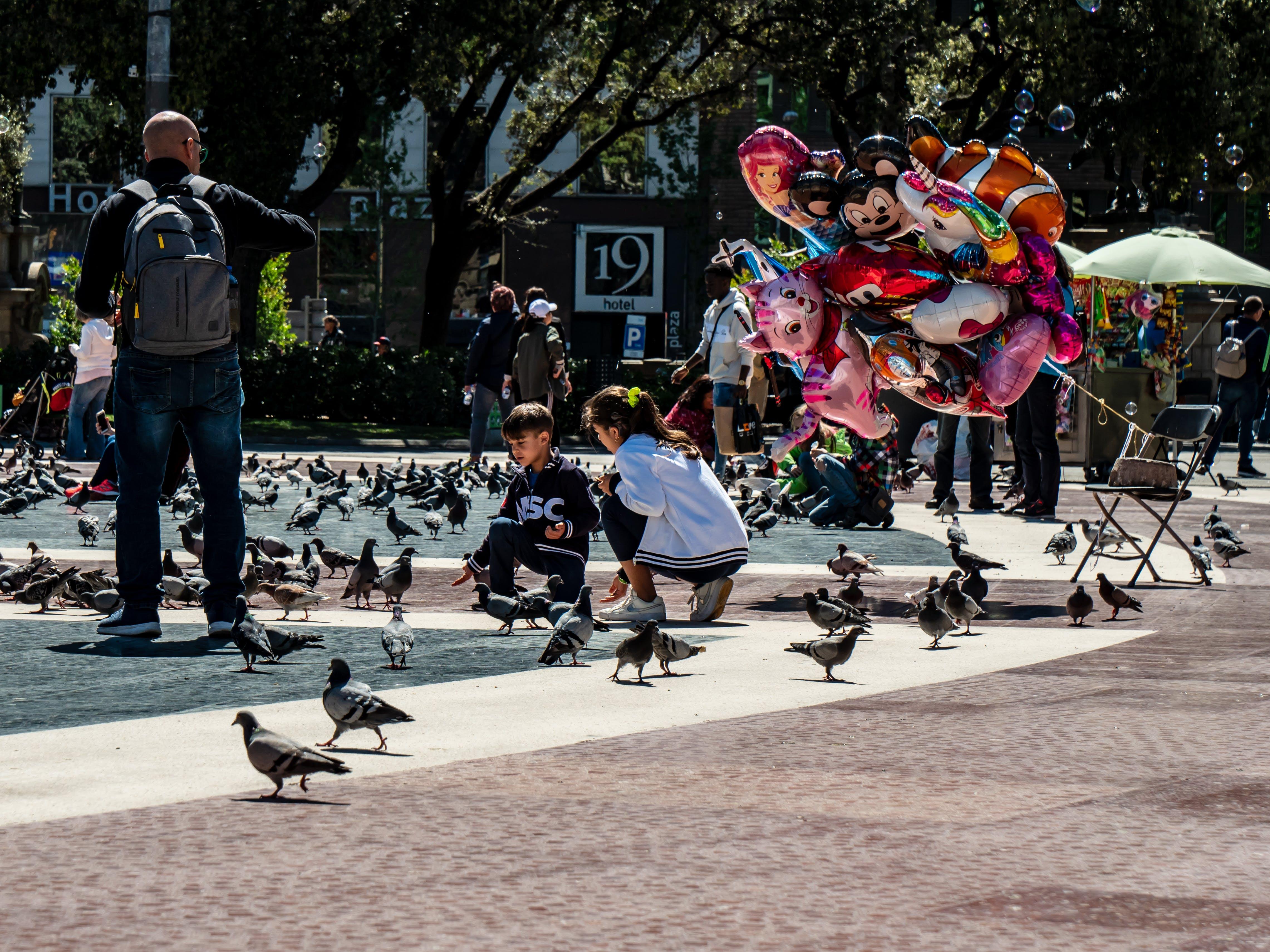 Free stock photo of balloons, feeding, kids, pigeons