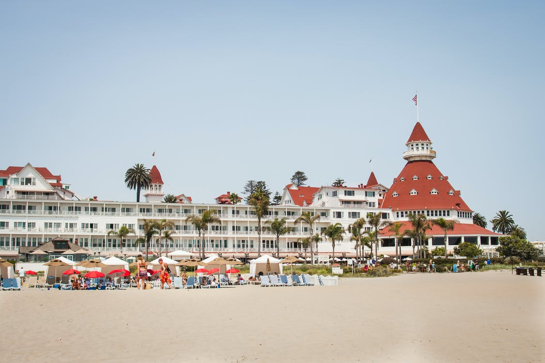 beach, hotel, palm tree