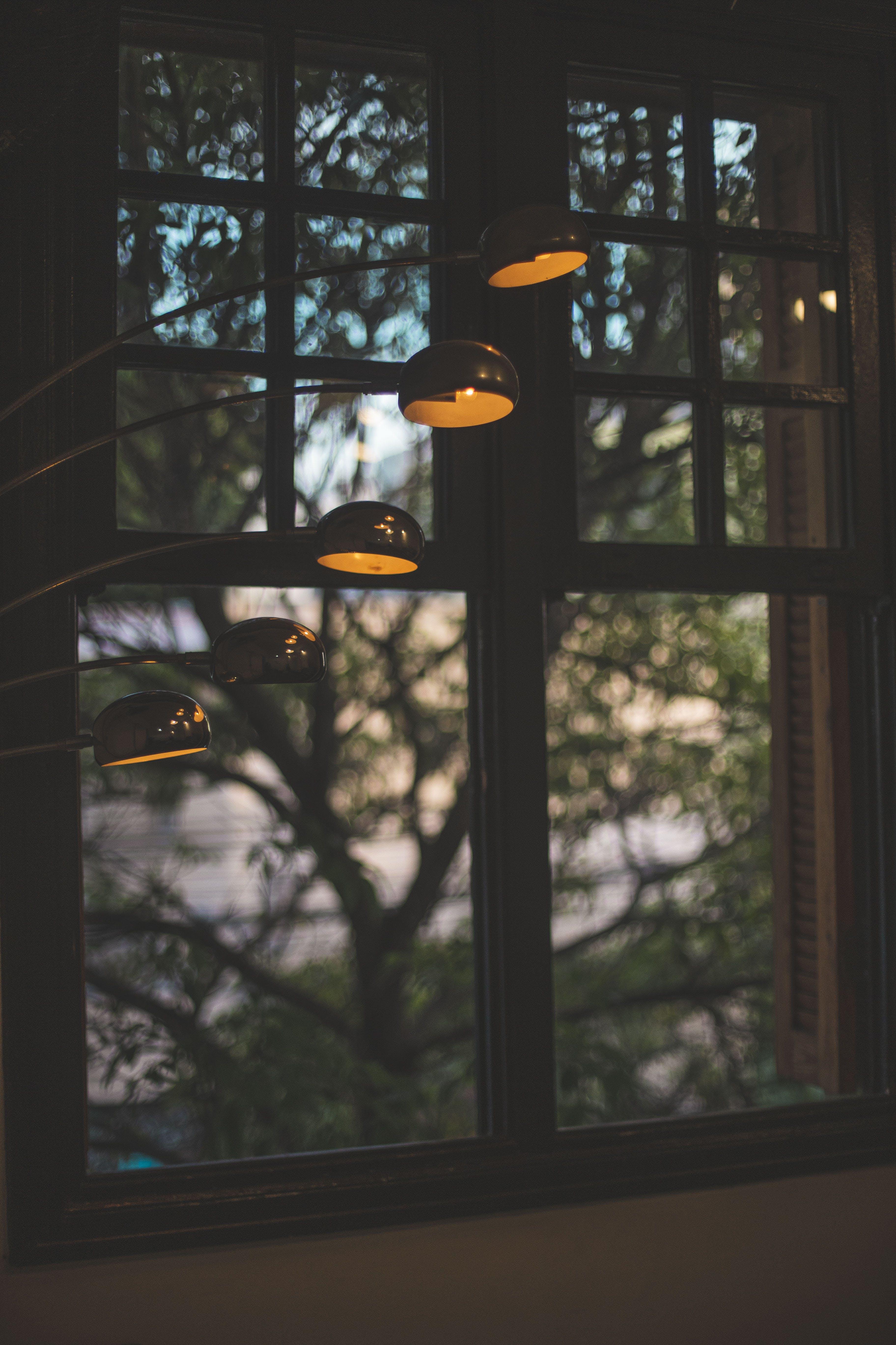 Kostenloses Stock Foto zu bäume, beleuchtung, design, drinnen