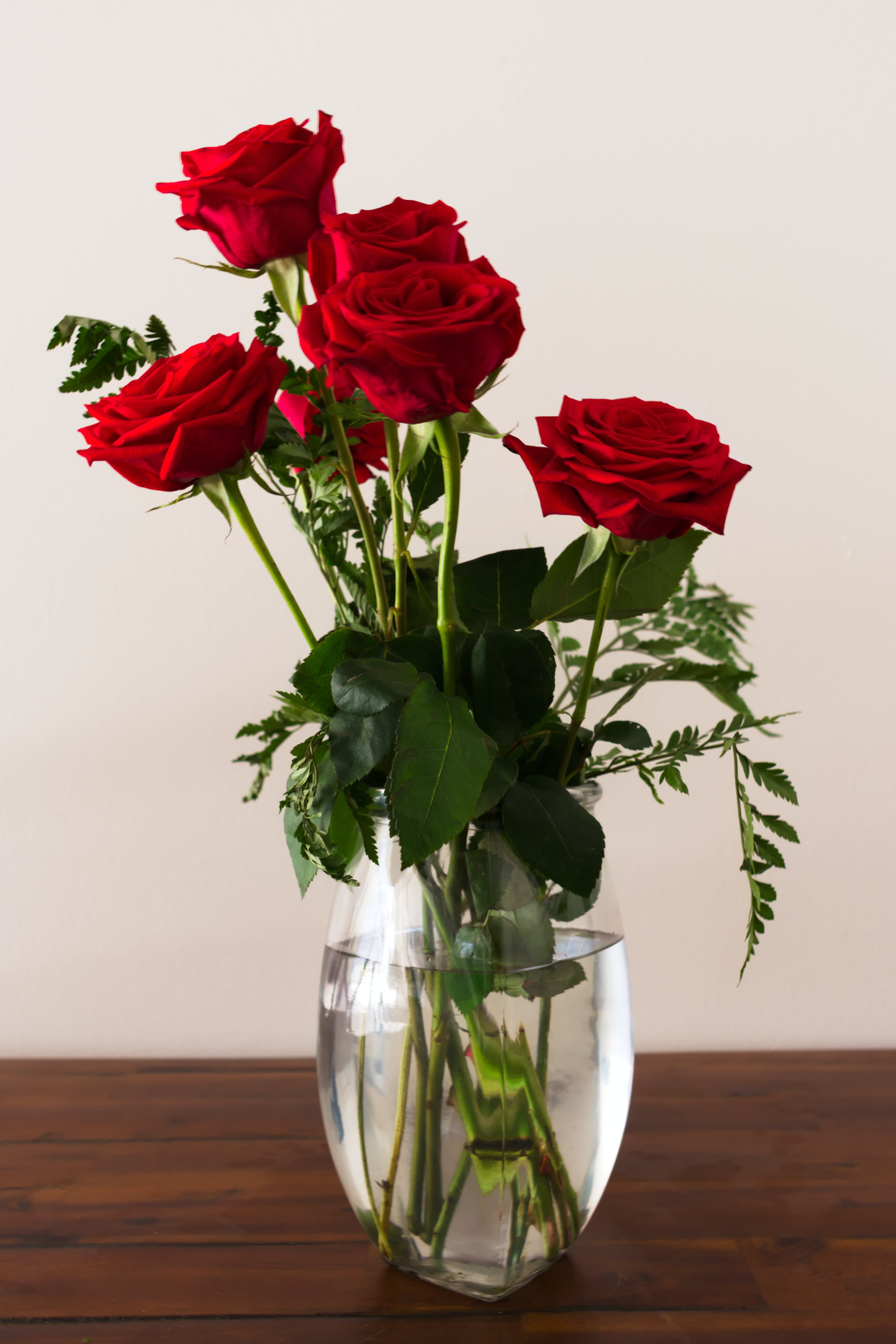 Immagine gratuita di acqua, bellissimo, bouquet, delicato