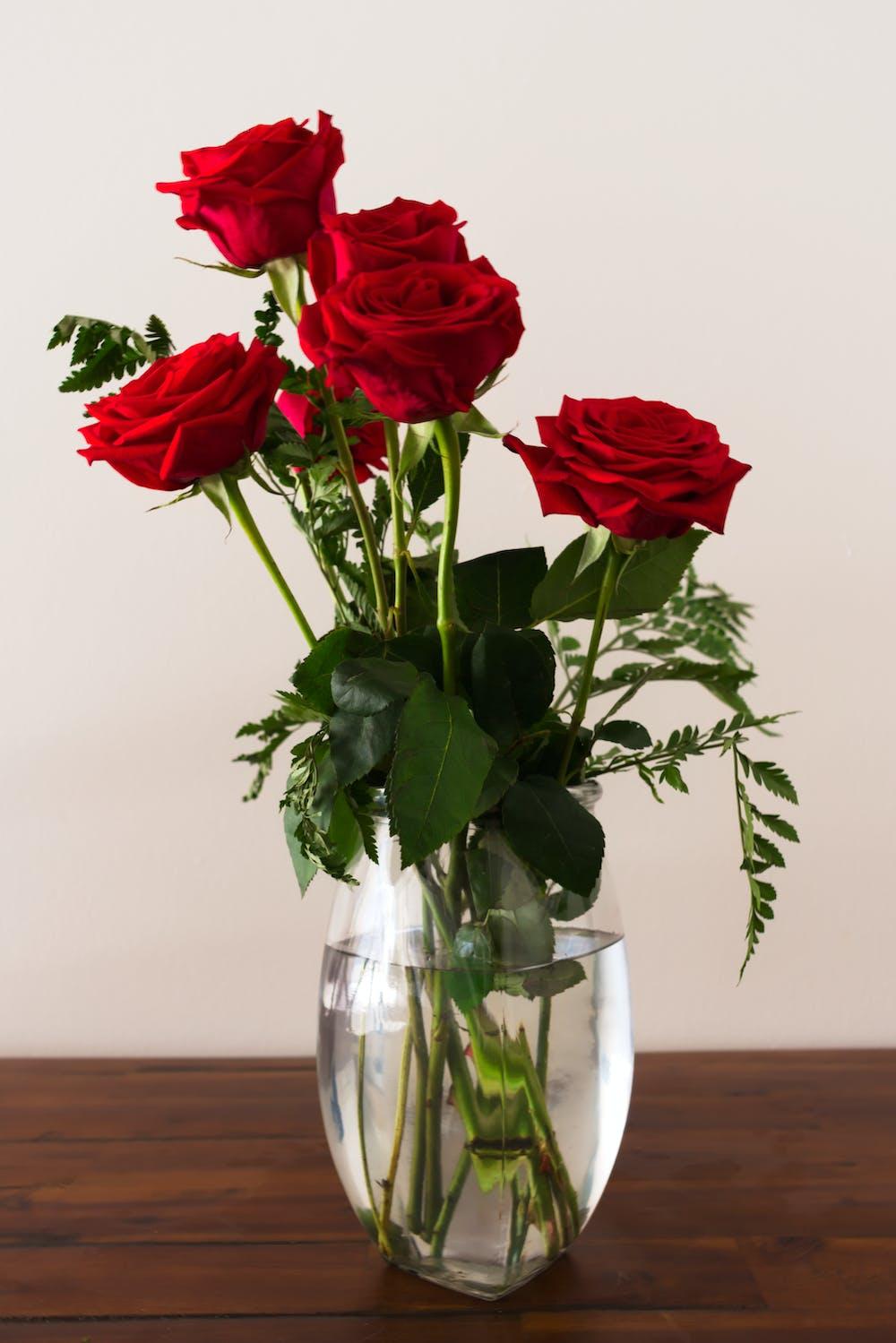 Photo of Roses On Flower Vase