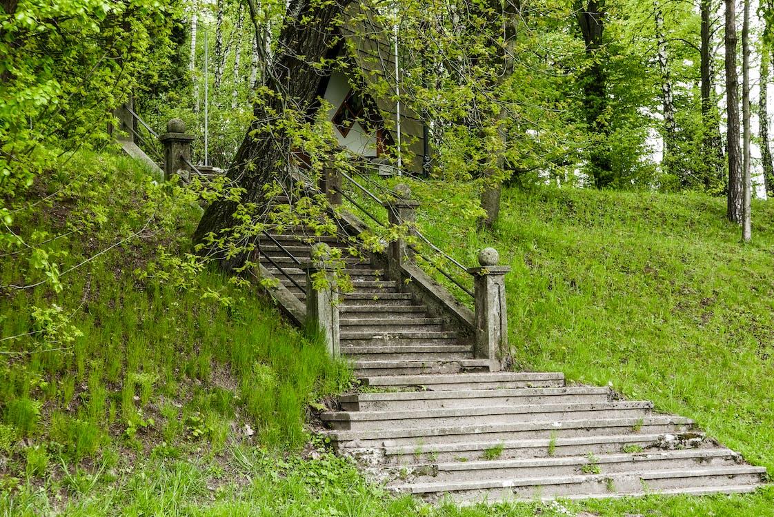 al pis de dalt, dalt, escales